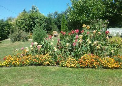 un massif avec plein de fleurs